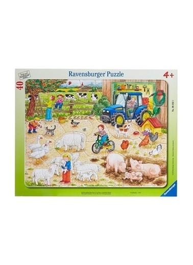 Ravensburger Oyuncak Renkli